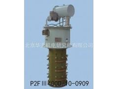 真空有载分接开关 P2FⅢ200-600D/10—0909