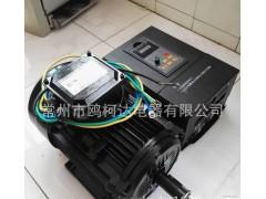 高效能源设备用 无刷电机 无碳刷高压电机 220v交流调速电
