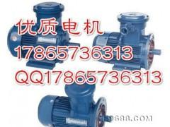 山西现货YB2-132S高效隔爆型电机优质增安型电机正压型电