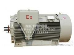 YAXn 5003-2 900KW高效率增安型三相异步电动机南阳防爆电机