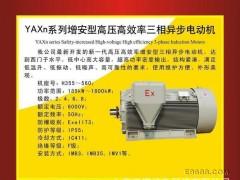 南阳防爆YAXn系列增安型高压高效异步电机