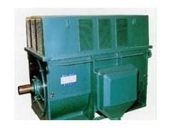 电机控制 电机制造 YR系列YR5001-10 400KW 6KV 590R高压电动机