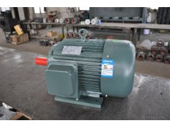 供应万通 YL 山东电机 电动机 YL系列双值电容单相异步电动机