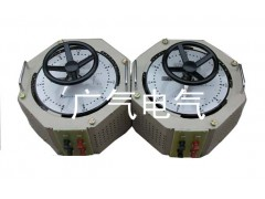 广气电气/TDGC2 接触式调压器