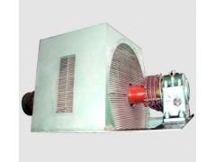 西安泰富西玛电机/YR/三相绕线型异步电动机