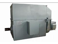 卧龙电气/YRKK YRKS系列/高压绕线式三相异步电动机