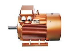 浙江金龙电机/YX系列/铸铁系列超高效率三相异步电机