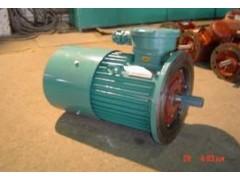 山东山防防爆电机/YB2系列/隔爆型三相异步电动机