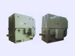沈阳电机/同步电机/磨煤机用三相异步电动机