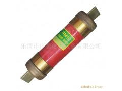 无填料封闭管式熔断器(铁路机车专用)RM10-250V/(15-200)A