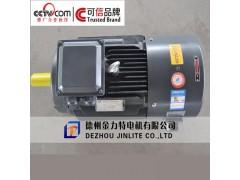 YVF2-250M-6-37KW变频调速三相异步电动机|山东电动机