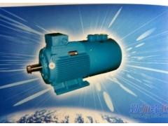 誉隆变频系列 电动机 厂家直销 欢迎来电咨询 变频系列