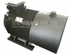 YPM2系列(替代YVF2系列)变频调速电机\沈阳电机