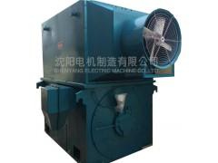 YPT、YPTKK系列高压变频电机\沈阳电机