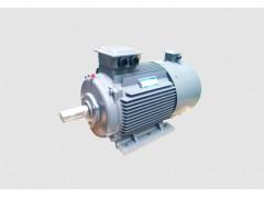 YVF2系列变频调速三相异步电动机\西安西玛电机
