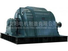 T系列大型交流同步电动机\沈阳电机