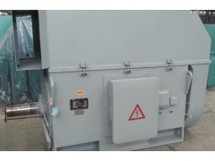 YX, YXKS, YXKK 系列6kV (H355~630)中型高压高效三相异步电动机\六安江淮