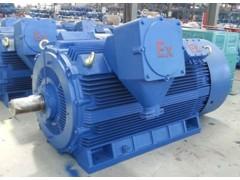 YB2-355~560 6kV和YB2-450~560 10kV 高压隔爆型三相异步电动机\六安江淮电机