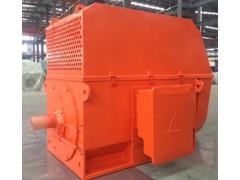 YX, YXKS, YXKK 系列10kV (H450~630)中型高压高效三相异步电动机\六安江淮电机