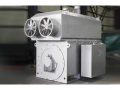 YP, YPKK 系列(H710~800)大型高压变频三相异步电动机\六安江淮电机
