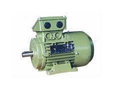 MD1A系列三相交流异步电动机\大连电机