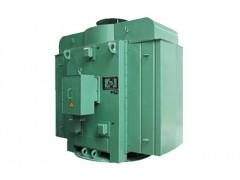 YLS, YLKS, YLKK系列10kV (H450~630)中型高压立式三相异步电动机\六安江淮电机