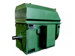 YKK系列6KV、10KV中型高压三相异步电动机\大连电机