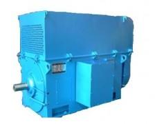卧龙电气/YKK YKS系列/高压三相异步电动机