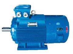 MDSP系列低频、低速、大扭矩变频调速电机\大连电机