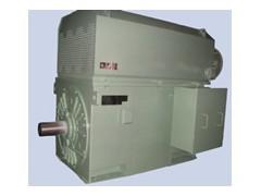 卧龙电气/YVKK系列/高压变频调速三相异步电动机