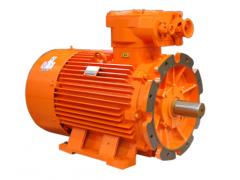 卧龙南阳防爆电机 YBK2系列煤矿井下用隔爆型三相异步电动机\卧龙电气