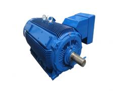 Y2Z系列紧凑型低压大功率电机(机座号H355—H560)\卧龙电气
