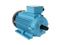 YK2系列螺杆压缩机用三相异步电动机\卧龙电气