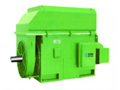 高压YRKK系列绕线转子三相异步电动机(机座号H500-H710)\卧龙电气