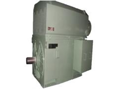 YVKK系列高压变频调速三相异步电动机(机座号H355-H710)\卧龙电气