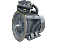 YYZ系列压缩机专用小机座大功率三相异步电动机(机座号H100—H355)\卧龙电气