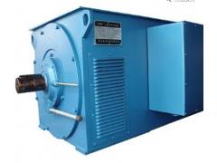 Y系列大中型高压三相异步电动机\卧龙电气