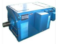 YR系列中型高压三相异步电动机\卧龙电气