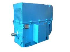 YKK、YKS系列中型高压三相异步电动机\卧龙电气