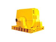 T系列2500-6000kW同步电动机\西安西玛电机