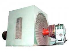 轧钢用大型绕线异步电动机\西安西玛电机