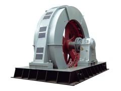 TDMK(TM)系列矿山磨机用大型交流三相同步电动机\沈阳电机