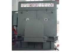 TAW系列增安型无刷励磁同步电动机\佳木斯电机