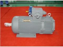 YBZPE系列起重用隔爆型电磁制动变频调速三相异步电动机\佳木斯电机