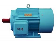 TYCX系列超高效三相永磁同步电动机\明腾电机