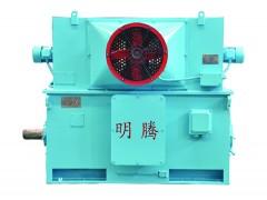 TYPKK系列变频调速高压超高效三相永磁同步电动机\明腾电机