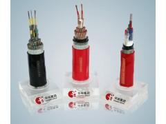 重型通用橡套电缆 YC 2×25 \安徽华电电缆
