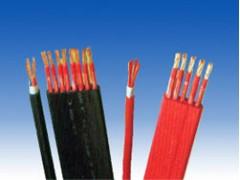 硅橡胶绝缘控制电缆\安徽江淮