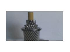 JNRLH/F1A、JNRLH/F1B、JNRLH/F2A、JNRLH/F2B碳纤维复合芯高伸率耐热铝合金绞线\远东电缆