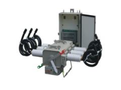 PGS上高压六氟化硫断路器(模压电缆出线)\乐清飞创